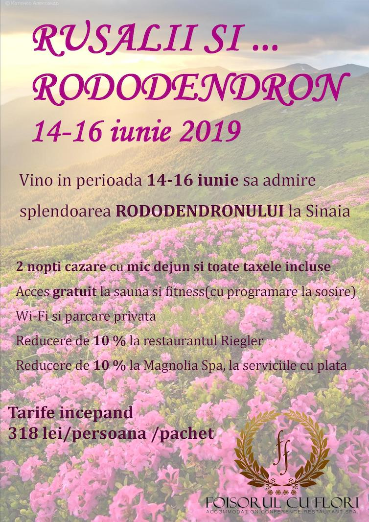 Rusalii si Rododendron 14-16 iunie